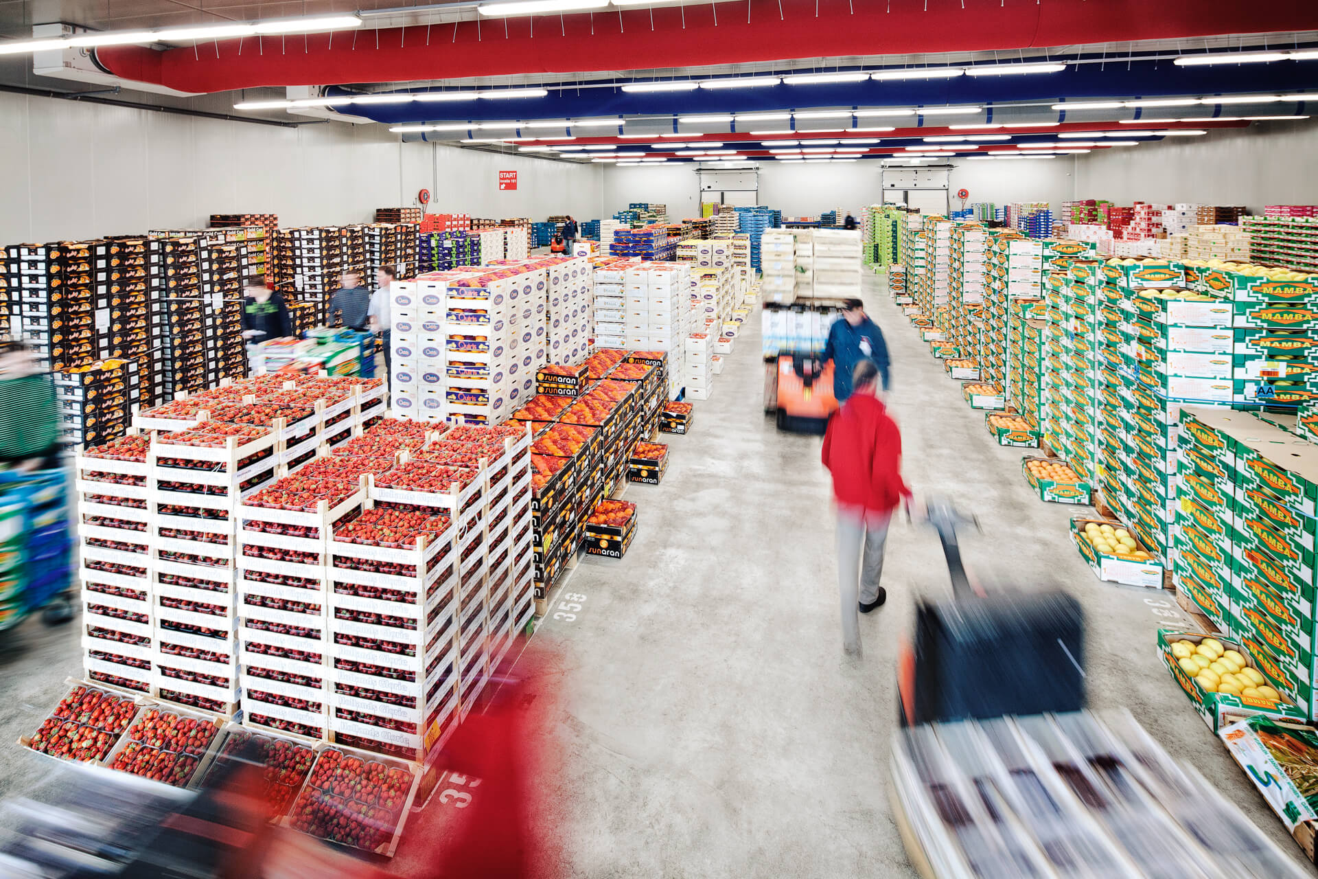 cash and carry 2.jpg